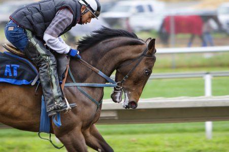 O jóquei monta um cavalo